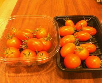 トマトが採れ×3放題