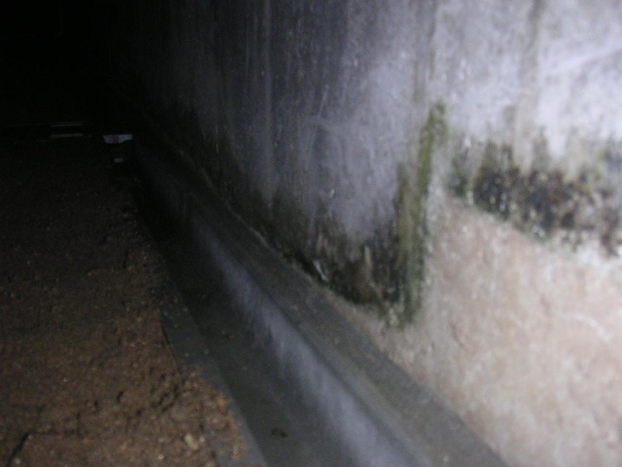 側溝の隙間にモルタル詰め